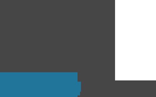 A New Website Using WordPress